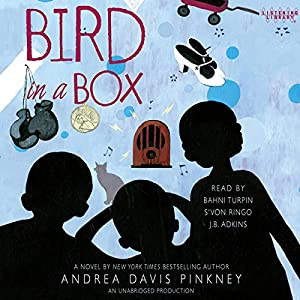 Bird in a Box Audiobook