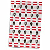 3dRose 777images Flag and Crest Patterns - The flag and Coat of Arms of the Republic of Austria make a colorful patriotic Austrian pattern. - 12x18 Hand Towel (twl_63235_1)