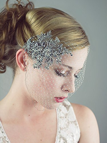 Gray And Silver Birdcage Veil With Beaded Lace Applique Bridal, Wedding by Deanna DiBene Millinery