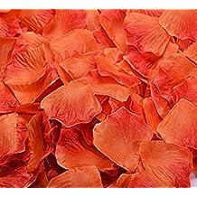 Da.Wa 1000PCS Silk Rose Petals Wedding Decoration Orange,Dark Red