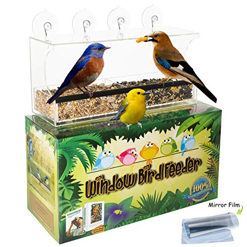 Entirely Zen Window Bird