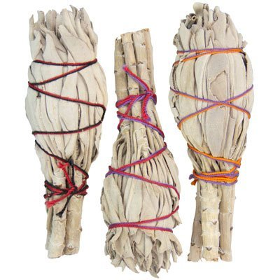 Smudge Sticks Bulk Mini California White Sage (pack of 24) by New Age