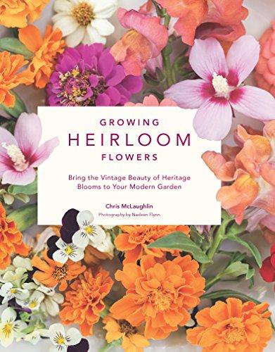 Heirloom Plant - Growing Heirloom Flowers: Bring the Vintage Beauty of Heritage Blooms to Your Modern Garden
