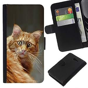 EJOY---La carpeta del tirón la caja de cuero de alta calidad de la PU Caso protector / Sony Xperia M2 / --Sorprendido Casa Gato Naranja American Shorthair