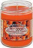 Pet Odor Exterminator Candle, Pumpkin Spice,13 oz