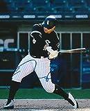 Signed Daniel Palka Photo - 8x10 COA A - Autographed MLB Photos