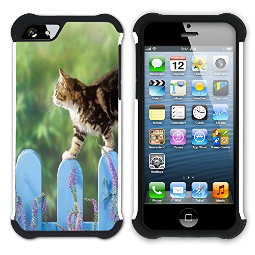 STPlus Gato en una caja Animal Doble Capa de Protección Rígido + Flexible Silicona Carcasa Funda Para Apple iPhone SE / 5 / 5S #10