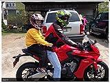 RBI 3 Handle Passenger Hold On Belt Motorcycle ATV Snowmobile Jet ski size XXL - Riding Belt