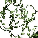 elegant party themes Hecaty 132 ft Olive Green Leaves Leaf Trim Ribbon for DIY Craft Party Wedding Home Decoration (Large Leaf 132ft)