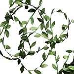 Hecaty-132-ft-Olive-Green-Leaves-Leaf-Trim-Ribbon-for-Baby-Shower-DIY-Craft-Party-Wedding-Home-Decoration-Large-Leaf-132ft