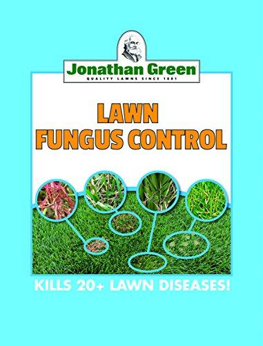 Dollar Spot Lawn Fungus - 3