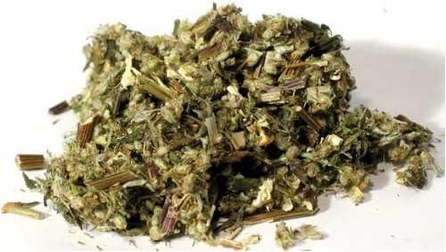 Mugwort Herb Organic Artemisia Vulgaris 40 Grams Seeds