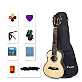 Concert Ukulele 23 Inch Ukelele Uke Hawaii Guitar for Beginner and Professional Player (Ukulele Kit, Type-1)