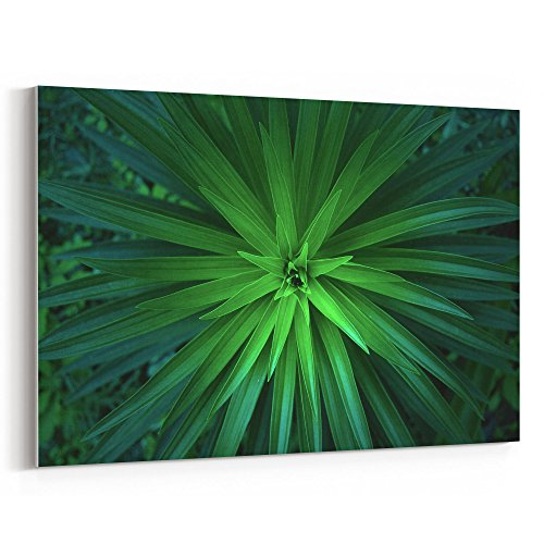 Westlake Art - Green Plant - 12x18 Canvas Print Wall Art - Canvas Stretched Gallery Wrap Modern Picture Photography Artwork - Ready to Hang 12x18 Inch - Palmetto Flora Saw