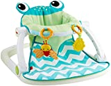 Fisher-Price Sit-Me-Up Floor Seat-Citrus Frog
