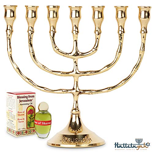 HalleluYAH Menorah 7 Branched Candelabra Plus Anointing Oil - Traditional Design - The Lamp of God - Judeo-Christian Symbol - Made in Israel Made of Brass Copper - 7 Inches High (Large Oil Menorah)