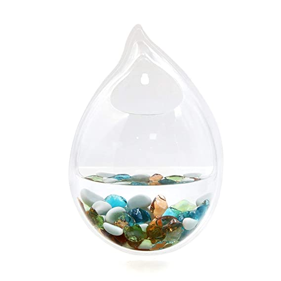Amazon.com : ZCHXD Acrylic Drop Shaped Wall Mounted Hanging Fishbowl Plant Bowl 7.9