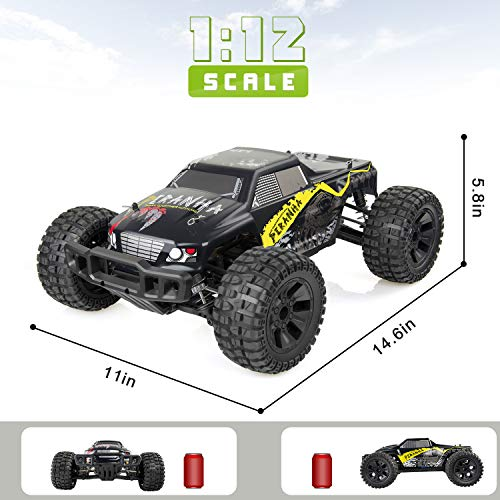Buy rc offroad truck
