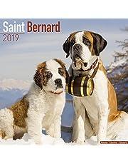 Saint Bernard Calendar 2019
