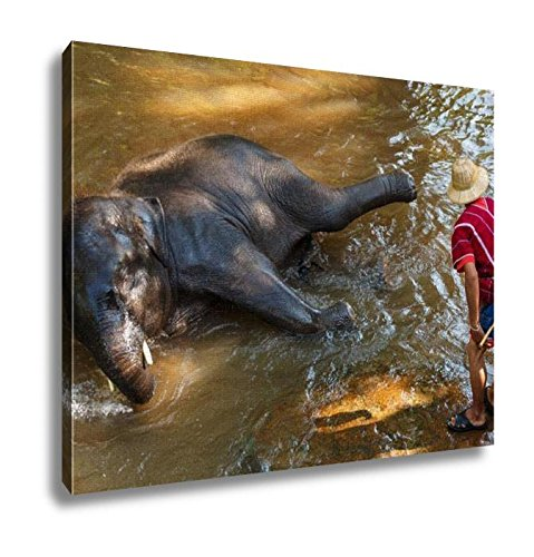 Ashley Canvas, Thai Young Elephant Was Take A Bath With Mahout, Home Decoration Office, Ready to Hang, 20x25, AG5256553 by Ashley Canvas