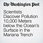 Scientists Discover Pollution 10,000 Meters below the Ocean's Surface in the Mariana Trench | Chelsea Harvey