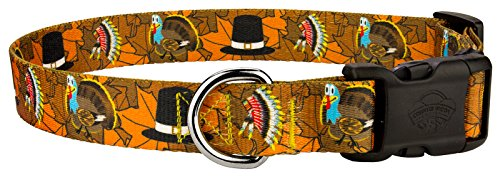 Country Brook Petz Deluxe Thanksgiving Tradition Dog Collar - Large
