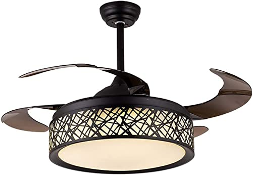 BIGBANBAN Black Cage Ceiling Fan