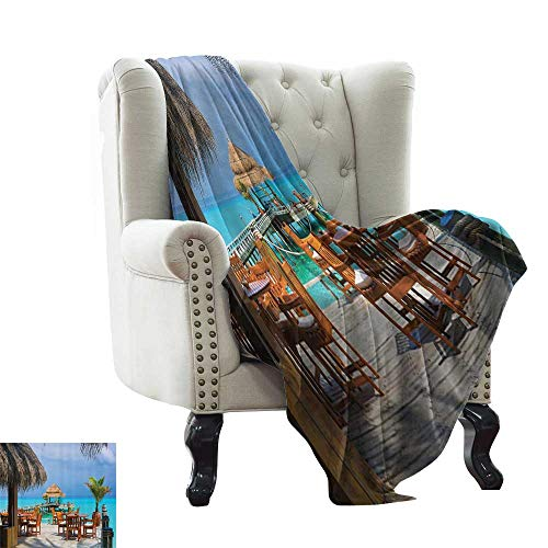 homehot Soft Blanket Queen Apartment Decor Collection,Ben Franklin Bridge and Philadelphia Skyline Under Sunsets Reflections on Water Image,Gray Ivory 90