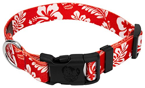 Country Brook Petz | Deluxe Hawaiian Dog Collar (Red, Small)