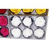 6 Rose Stabilizzate extra Vari colori scopri su PassioneFiori.it