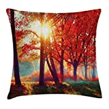 Ambesonne Tree Throw Pillow Cushion Cover, Autumnal Foggy Park Fall Nature Scenic Scenery Maple Trees Sunbeams Woods, Decorative Square Accent Pillow Case, 16 X 16 Inches, Orange Yellow Teal