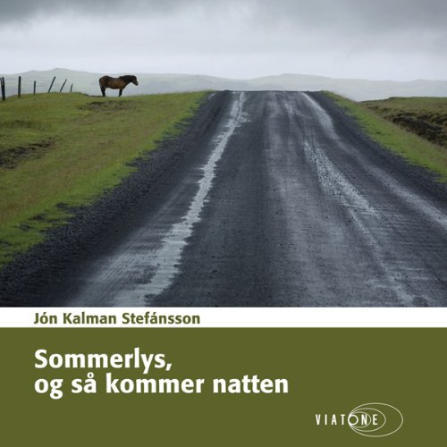 """Sommerlys, og så kommer natten [Summer Night and Then Comes the Light]"" av Jón Kalman Stefánsson"