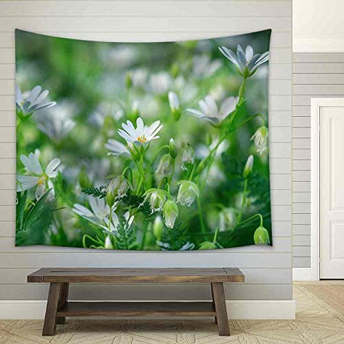 White Flowers in Meadow Beautiful Nature in Spring Fabric Wall