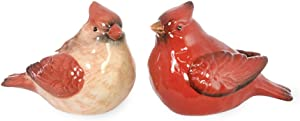 Celebrate the Home Birds of the Season Salt and Pepper Shaker Set, Red Cardinal