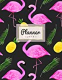 Planner 2019: Bright Tropical Flamingo   Weekly