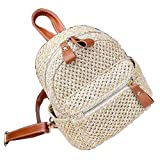 Straw Bag Handmade Beach Summer Bag Straw Backpack for Travel [A]