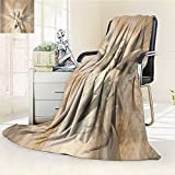 AmaPark Digital Printing Blanket Statue Of Angel Woman in Holy Cathedral Style Mythation Tan Summer Quilt Comforter
