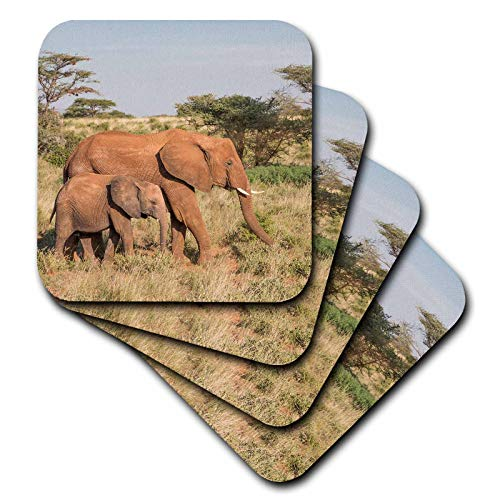 3dRose Danita Delimont - Elephants - Africa, Kenya, Samburu National Reserve. Elephant and baby. - set of 4 Ceramic Tile Coasters - Tile Baby Coaster