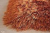 5'x7' Rust Light Orange Dark Orange Burnt Orange Two Tone Color Shimmer Shaggy Shag Fluffy Fuzzy Furry Area Rug Carpet Contemporary Modern Decorative Solid Living Room Bedroom (Glorious Rust)