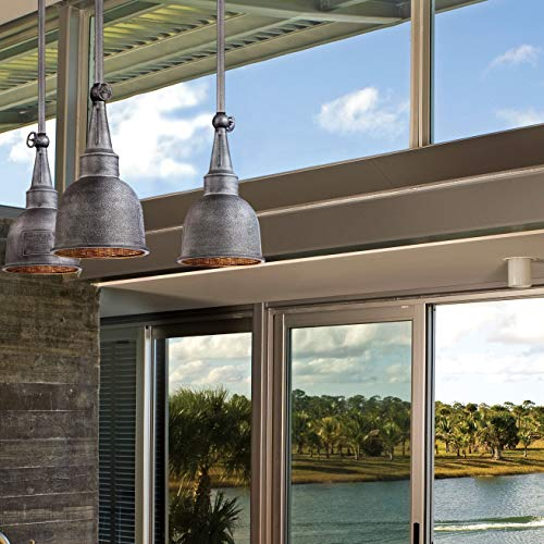 Medium Pendant Lighting Outdoor (Troy Lighting Raleigh 10