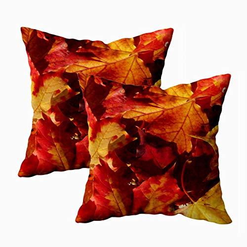 (EMMTEEY Home Decor Throw Pillowcase for Sofa Cushion Cover,Fall Autumn Leaves Accent Decorative Square Accent Zippered and Double Sided Printing Pillow Case Covers 18X18Inch,Set of 2 )