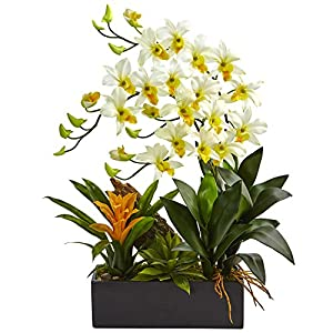Nearly Natural Dendrobium Orchid and Bromeliad Silk Arrangement, Cream 34
