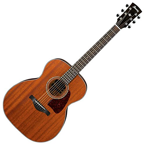 Ibanez AC240OPN Artwood Series Acoustic Guitar (Open Pore Natural) ()
