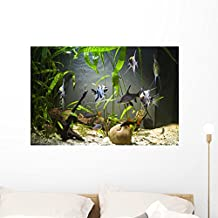 Freshwater Aquarium Wall Mural by Wallmonkeys Peel and Stick Graphic (36 in W x 24 in H) WM271596