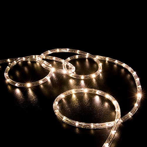 WYZworks 10', 20', 25', 50', 100', 150' ft (100' feet) Warm White LED Rope Lights 2 Wire Accent Holiday Christmas Party Decoration Lighting | UL & CSA Certified