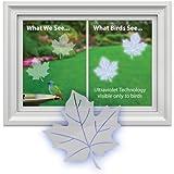 Maple Leaf Window Decal-Save Wild Birds!