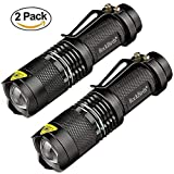 Rockbirds LED Flashlight A100 Mini Super Bright (Small Image)