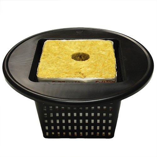 (5) 6 Square Wide Lip Bucket Basket Lids + (5) 6x6x6 Rockwool Blocks CHQ