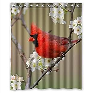 Classic Red Cardinal Bird Design Funny Birds Art Decor 100 Home Decorators Catalog Best Ideas of Home Decor and Design [homedecoratorscatalog.us]