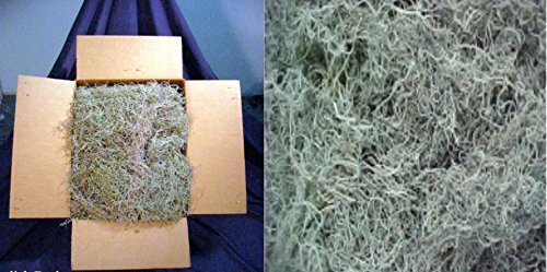 (Real Spanish Moss approx 5 lbs boxed, cleaned)